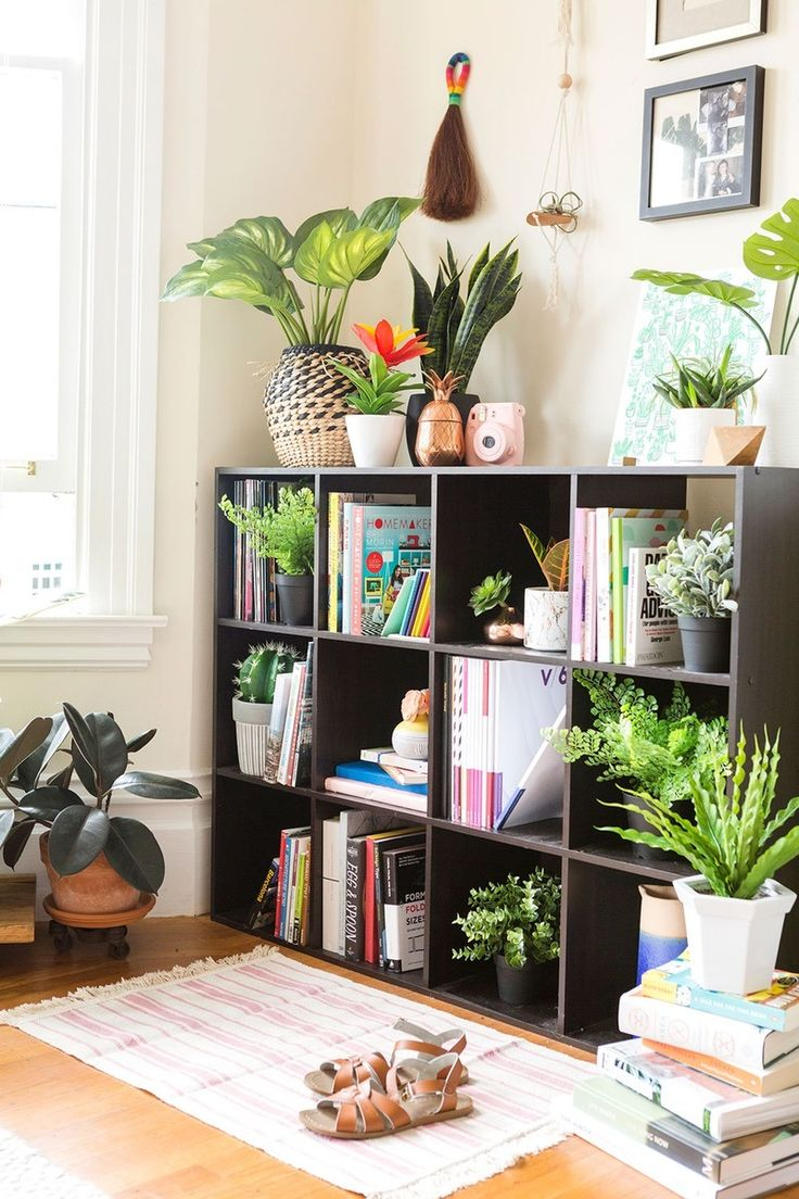 Family Room Design Ideas That Will Keep Everyone Happy: Top 10 Beautiful Artificial Indoor Plants Ideas Everyone Will Like