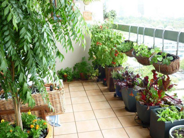 amazing balcony designs with garden