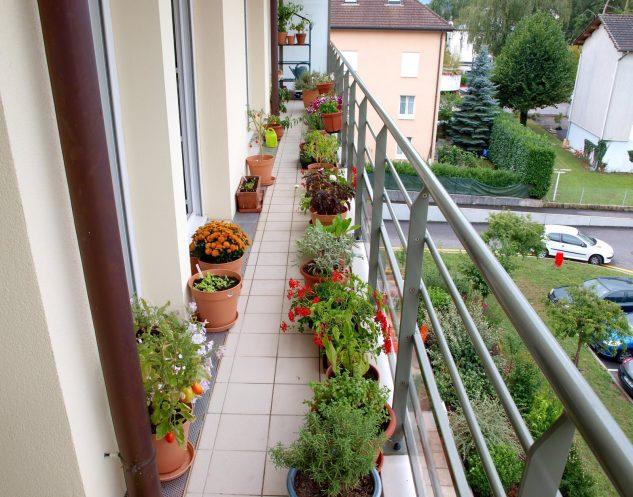 apartment balcony designs with garden