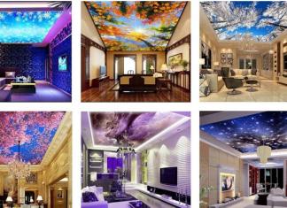 Innovative Ceiling Mural Home Design Ideas